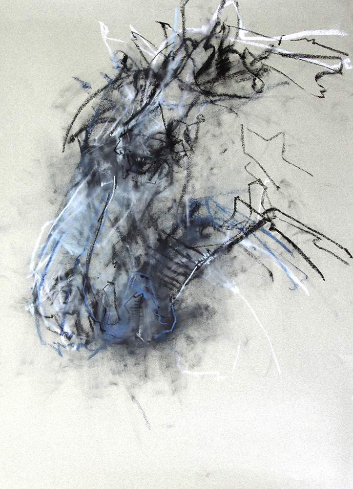 Horse chalk on paper , 29 x 21 inches